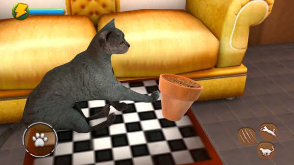猫模拟器2021