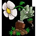 植物大战僵尸95版官方正版